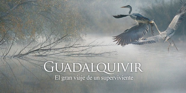 Guadalquivir-e1383768482877